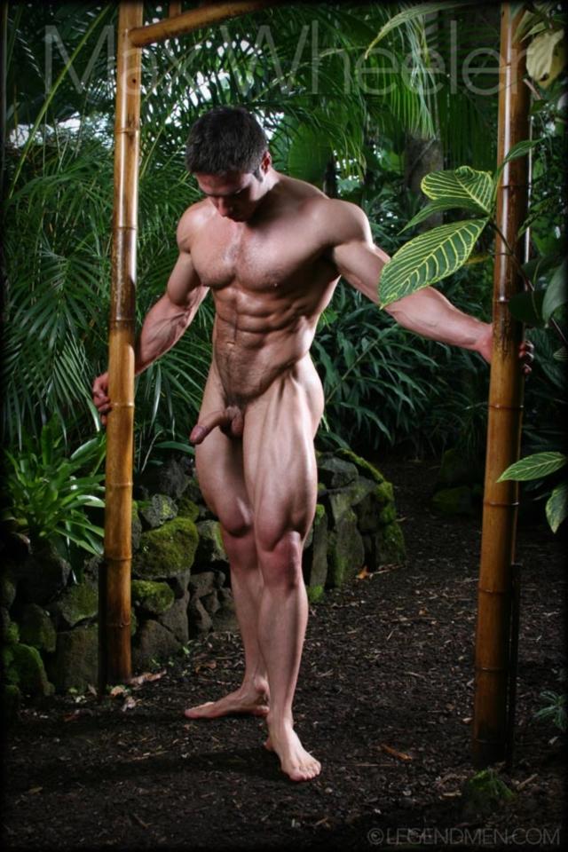 Max-Wheeler-Legend-Men-Gay-Porn-Stars-Muscle-Men-naked-bodybuilder-nude-bodybuilders-big-muscle-huge-cock-05-gallery-video-photo